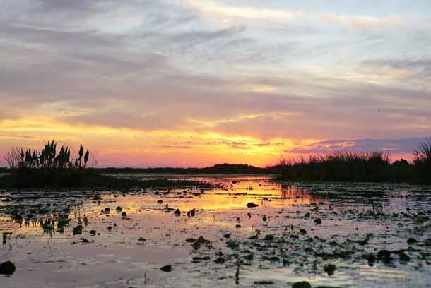 Áreas protegidas en el Día Mundial del Agua