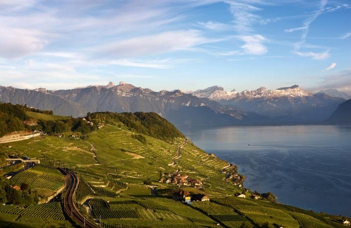 Suiza invita con sus mejores vinos