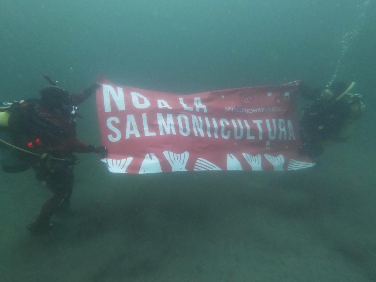 Tierra del Fuego dijo NO a la salmonicultura