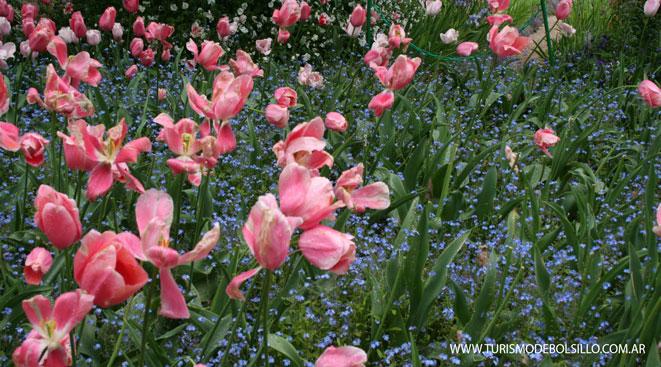 Paisajes impresionistasde Monet en Normandía /Por Pierre Dumas