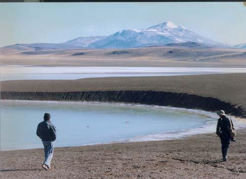 Un oasis en los Andesa 4.200 metros de altura