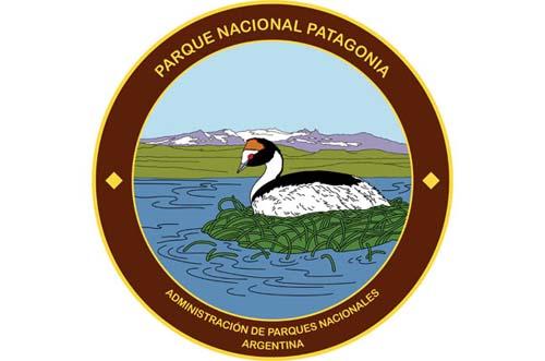 Nuevo Parque Nacional Patagonia protege al macá tobiano