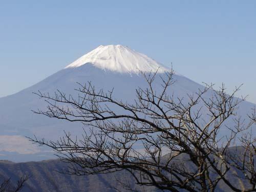 En Japón, Airbnb es legal y no lo es...