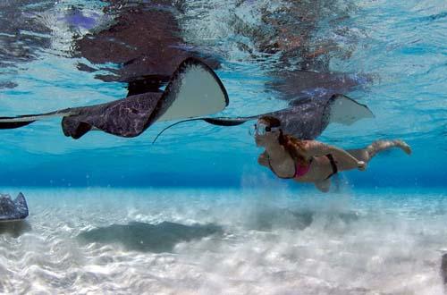 Las Islas Caimán dan una garantía contra hurracanes