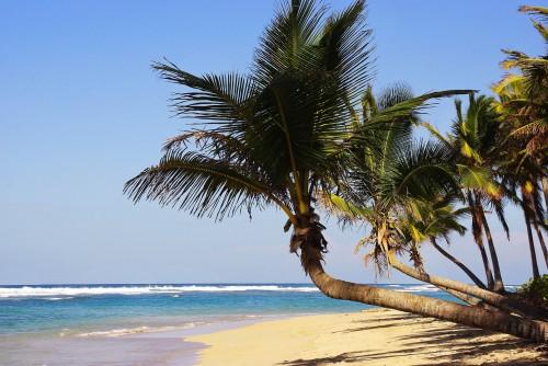 Ahora se vuela directo de Córdoba a Punta Cana