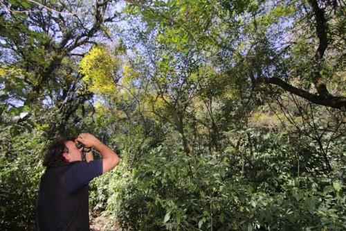 Nuevos senderos en una reserva tucumana