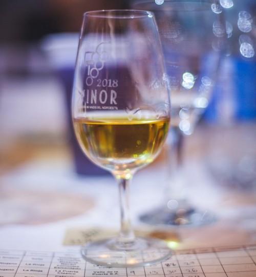 Evinor: los mejores vinos del norte argentino