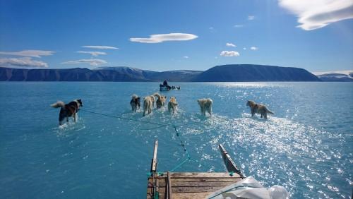 El Ártico se está derritiendo