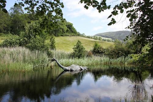 ¿El monstruo del Loch Ness sería una anguila?