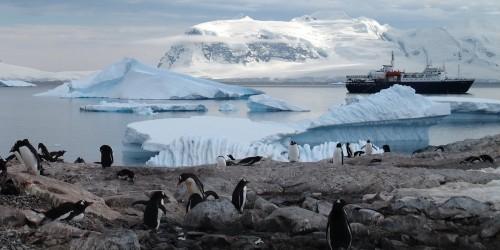 Airbnb te lleva dos meses a la Antártida