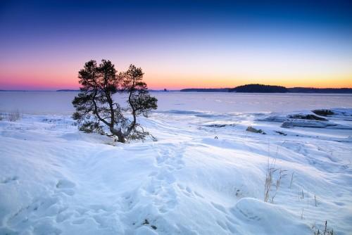 En un hotel de Finlandia: menos contaminas, menos pagas