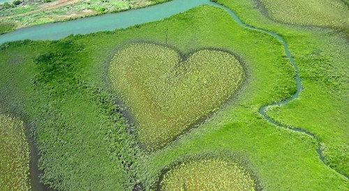 Islas corazones: donde la naturaleza celebra San Valentín