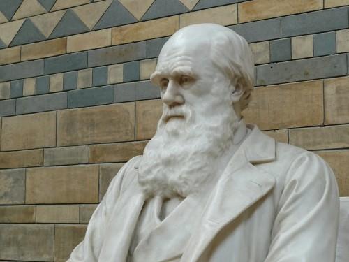 Darwin está celebrado hoy en todo el mundo