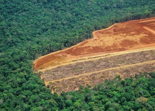 Deforestación récord en enero en Brasil
