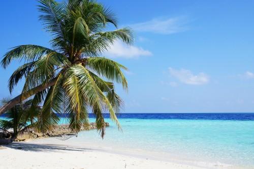 Se viene un mundo sin playas