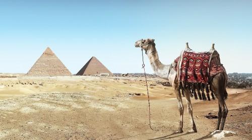 Va a desaparecer un tercio del turismo mundial