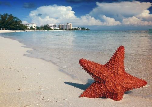 Durante la cuarentena: disfrutá de las Bahamas