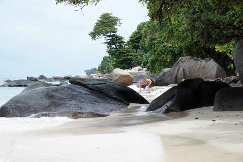 Durante la cuarentena: disfrutá de las Islas Seychelles