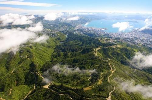 Zealandia: naturaleza en plena ciudad