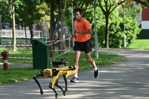En Singapur: un perro robot hace respetar distancias
