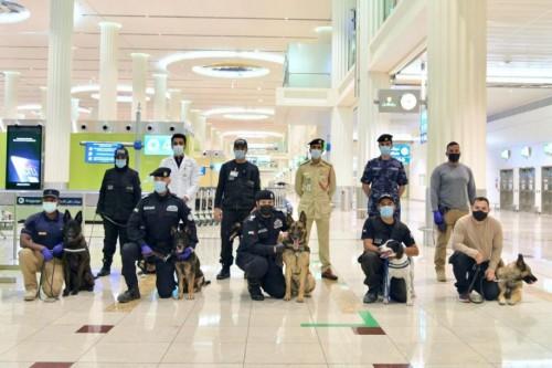 En los Emiratos: usan perros para detectar pasajeros con Covid 19