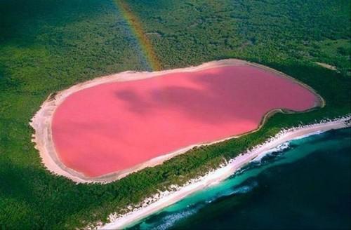 Cuan rosa es el lago Hillier de Australia