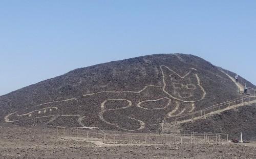Encontraron un gato de 37 metros en Nazca