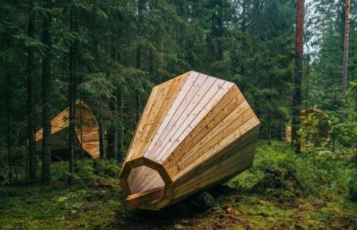 Amplificadores naturales para escuchar el sonido de los bosques