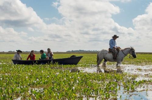 Corrientes habilitó todos los portales de acceso al Iberá