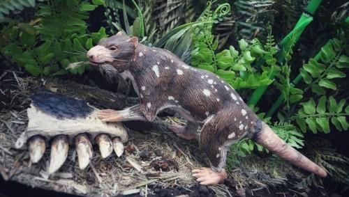 Cómo era la Bestia de Cinco Dientes que descubrieron en Chile