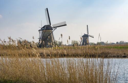 Palabras que existen solo en holandés