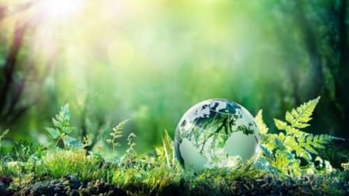 Verde, sustentable o equitable: las nuevas tendencias del turismo responsable