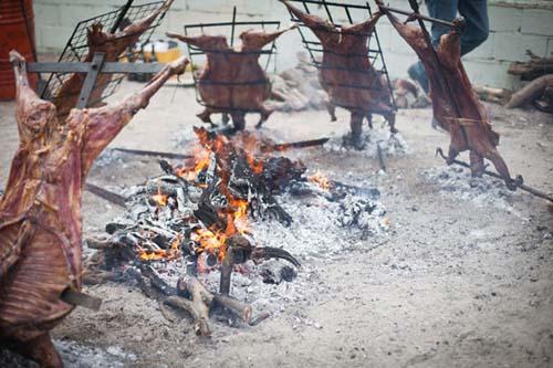 La fiesta del cordero patagónico