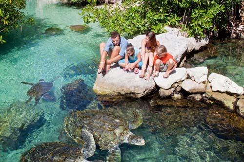 Xcaret, uno de los mejores parques temáticos del mundo